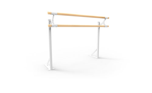 Double floor mount barre and stanchion